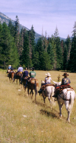 hunting, fishing, trail riding, camping adventures in the Idaho Selway-Bitteroot Wilderness.